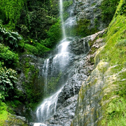 Chadwick Waterfalls in Shimla