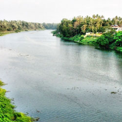 Chalakkudy River in Thrissur