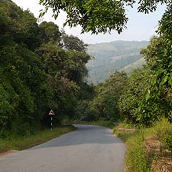 Charmadi Ghat in Chikmagalur