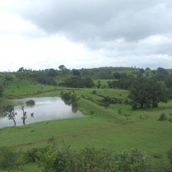 Chikhaldara Wildlife Sanctuary in Amarvati