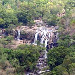 Chinnar Wildlife Sanctuary in Idukki