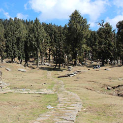 Churdhar Sanctuary in Shimla