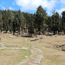 Churdhar Sanctuary in Shimla