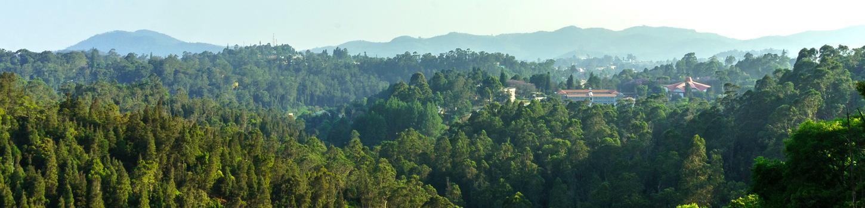 Coonoor Hills