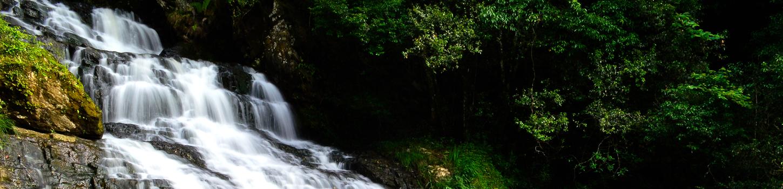 Crinoline WaterFalls