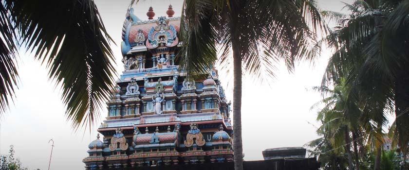 Darbhasayanam