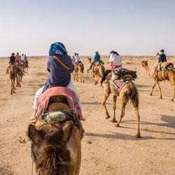 Desert Safari In Jaisalmer in Jaisalmer