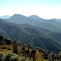 Dhanaulti Hills in Dhanaulti