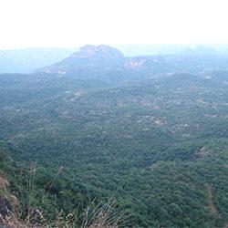 Dhupgarh Hill in Pachmarhi