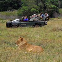 Gondwana Private Game Reserve in Garden Route