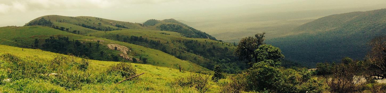 Gopalaswamy Betta Hills