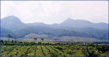 Gunung Jerai in Kedah
