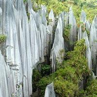 Gunung Mulu National Park in Sarawak