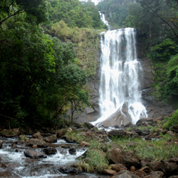 Hebbe Waterfalls in Chikmagalur