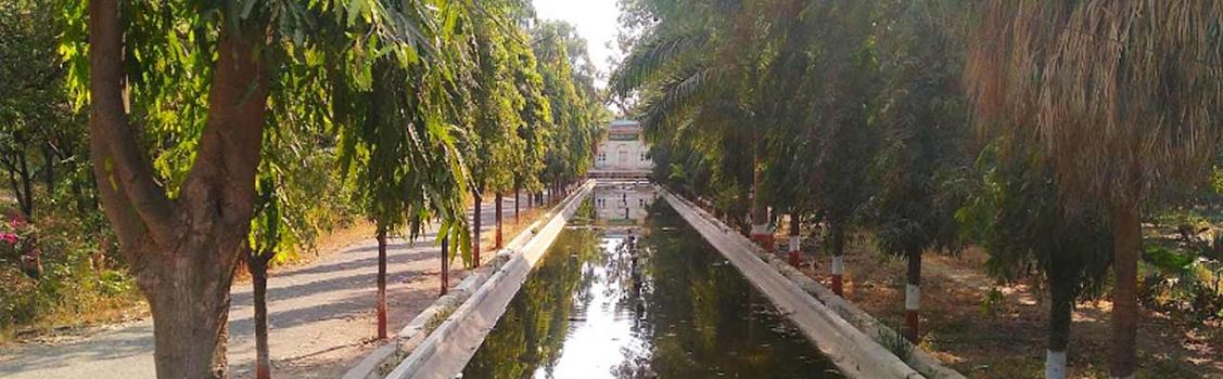 Himayat Bagh