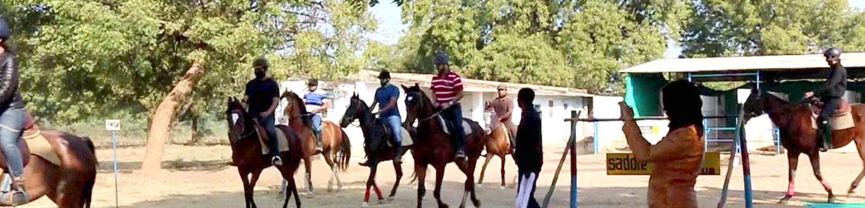 Horse Safari in Ahmedabad