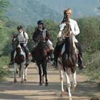 Horse Safari in Bangalore in Bangalore