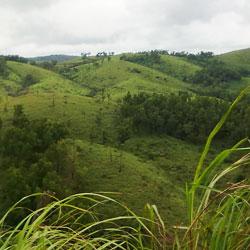Idukki Hills in Idukki