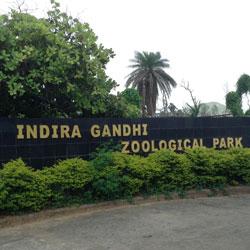 Indira Gandhi Zoological Park in Visakhapatnam