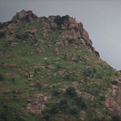 Jamadhi Hill in Vellore
