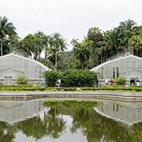 Jardim Botanico de Sao Paulo in Sao Paulo
