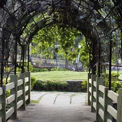 Kakatiya Musical Garden in Warangal