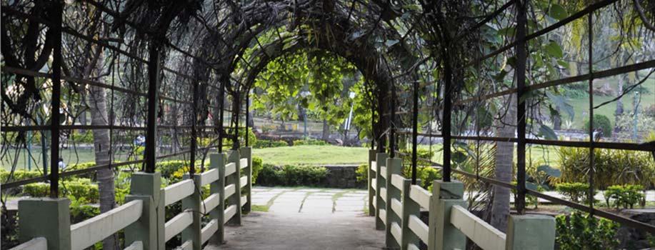 Kakatiya Musical Garden