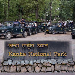 Kanha National Park in Kanha
