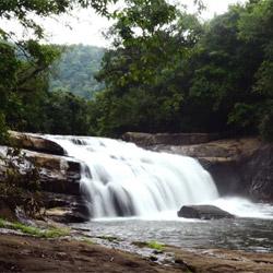 Keezharkuthu Falls in Munnar