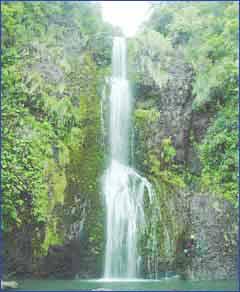 Kitekite Falls in Auckland