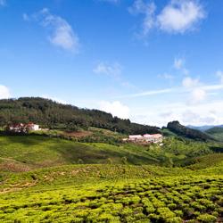 Kotagiri Hills in Nilgiris