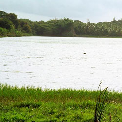 Kukkarahalli Lake in Mysore