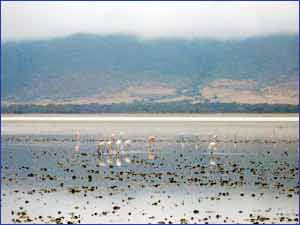 Lake Magadi in