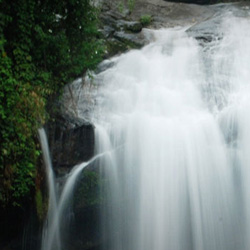 Lakkom Waterfalls in Munnar