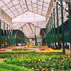 Lalbagh Botanical Garden in Bangalore