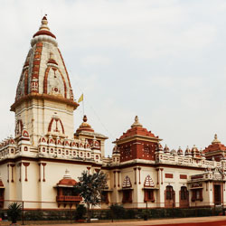 Laxmi Narayan Temple in Bhopal