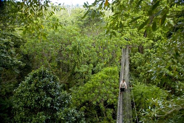 Le Pupu Pue National Park in Upolu
