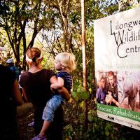 Lilongwe Wildlife Centre, Malawi in Lilongwe