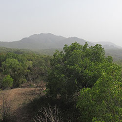 Mahadeo Hill in Pachmarhi