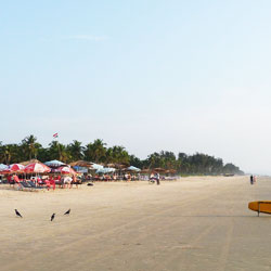 Majorda Beach in Goa City
