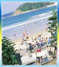 Manly Beaches in