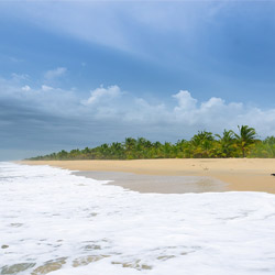 Marari Beach in Alleppey