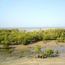 Marine National Park in Jamnagar