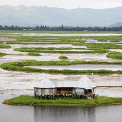 Moirang in Imphal