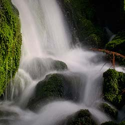 Mossy Falls in Mussoorie