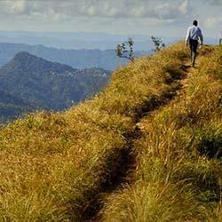 Trek to Tendong Hill in Gangtok