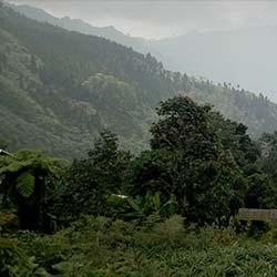 Mountain Trekking in Ravangla in Ravangla