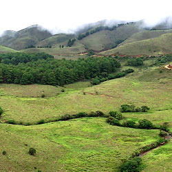 Mukurthi National Park in Nilgiris