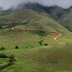 Mukurthi National Park in Ooty
