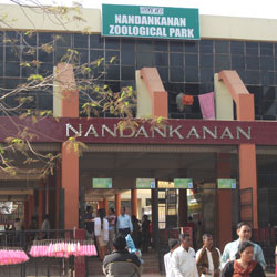 Nandan Kanan National Park in Bhubaneswar